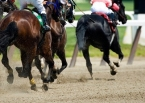 The Kentucky Derby and glimpses of God