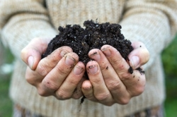 Human composting: ashes to ashes, dust to dust?