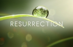 How resurrection shakes things up (on ABC and elsewhere)