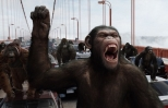 Planet of the Apes and the reason monkey movies fascinate